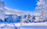 Blue-sky-and-white-nature-Sunny-winter-day_5120x3200.jpg - Городок